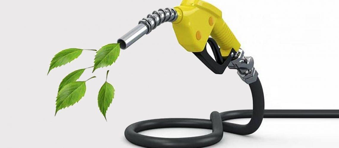 biodiesel aggregaten